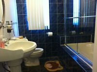$425/bedroom ALL inclusive house. 2 rooms left- Fully furnished!