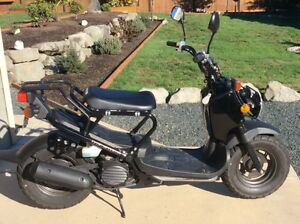 """New"" 2008 Honda Ruckus Scooter"