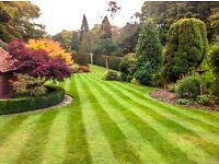 Gardening Team Leader Required - Full Time