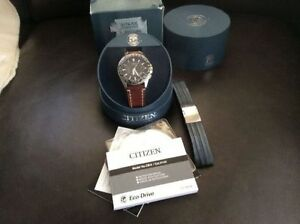 Citizen Eco-Drive World Time Watch