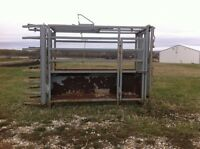 Roping Chute For Sale