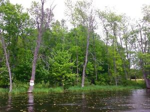 Bobs Lake Waterfront Lot for Sale Kingston Kingston Area image 2