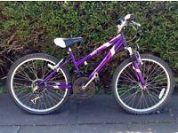 1 x Girls 8-12 years purple APOLLO Bike (RRP: £150) - Fantastic Condition!