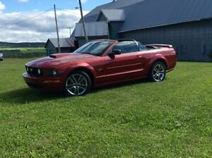 2008 Ford Mustang California Special Cabriolet