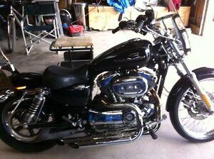 2005 Harley Davidson Sportster 1200 Custom Regina Regina Area image 2