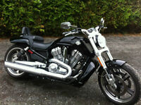 2009 Harley Vrod Muscle tres propre