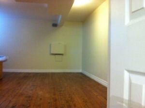 Bright, newly renovated basement apartment in Junction Triangle