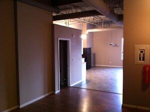 EXECUTIVE NEW YORK STYLE LOFT / ONE MONTH FREE RENT