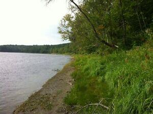 GRAND terrain bord de l'eau / LARGE wather front lot Gatineau Ottawa / Gatineau Area image 5