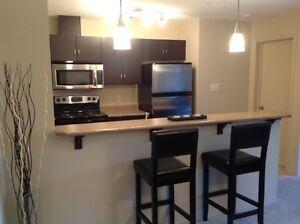 Open concept, 2 bedroom 2 full bathroom North Edmonton