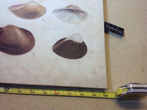 "2 NEW with tags shell prints on canvas - 13.5"" x 20"" Cambridge Kitchener Area image 3"