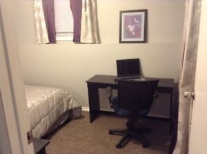 Lower level room for rent Aug. 20