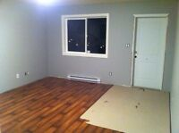 1 bedroom suite for rent in brand new house