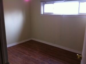 A One Bedroom Basement Apartment In Richmond Hill
