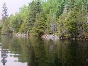 Impressive 370 Acre Sharbot Lake Lot!