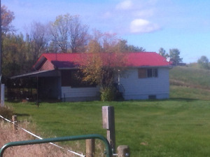 Quiet country house for rent