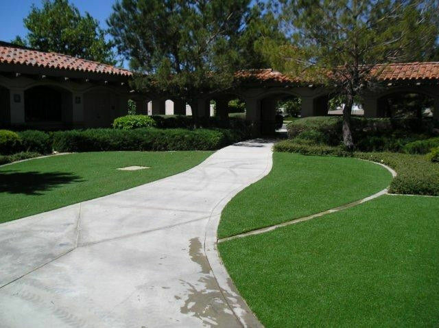Top 5 Benefits of Synthetic Grass