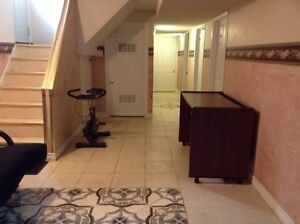 Gorgeous furnished one bedroom basement apartment in Brampton (w