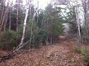 21 Acres Bartlett Mills NB - Near St Andrews and St Stephen