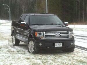 2010 Ford F-150 SuperCrew Platinum 4x4 Pickup Truck