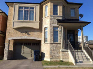 New Basement Apartment for Couple