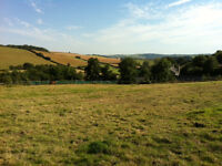GRAZING FOR RENT WITH STABLES