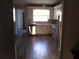 MEGA STORAGE SPACE--MILLWOODS HOUSE FOR RENT