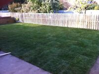 SOD INSTALLATION - GET A FREE QUOTE TODAY