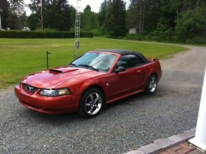 2004 Ford Mustang Décapotable Cabriolet