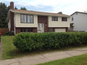 SPACIOUS BI LEVEL! OPEN HOUSE SUN AUG 20TH 1-3