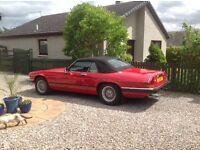 Jaguar car for sale