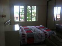 RIVERWOOD  Large double room All new furniture Riverwood Canterbury Area Preview