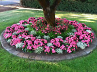 Need your flower beds weed free?