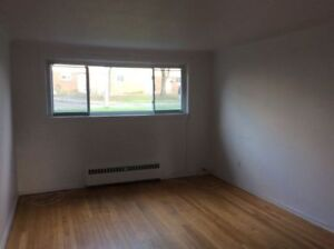 Spacious 2 bedroom apartment- Vanier