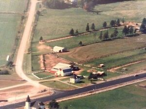 Horse Farm for Sale, 10 minutes west of city!