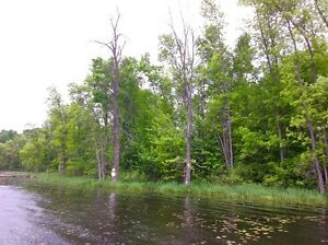 Bobs Lake Waterfront Lot for Sale Kingston Kingston Area image 3