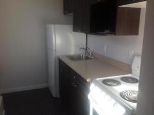 AMAZING DOWNTOWN BACHELOR APARTMENT - CLEAN/NEWLY RENOVATED!