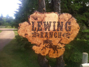 Ranch for Rent 10 Mins South of Leduc