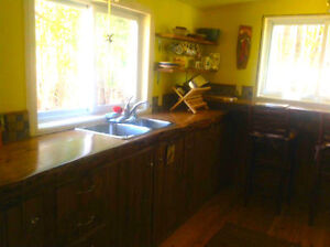 Quaint renovated cottage in Ompah, close to Palmerston lake Kingston Kingston Area image 2