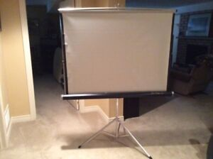 Lenticular Projection Screen