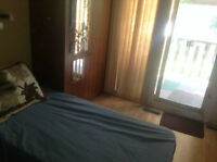 Short-term great location room for rent (Room in a 3 bdrm house)