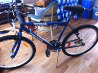 Mountain Bike - great condition