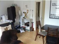 Cozy and spacious complete 1 bedroom flat in Stoke Newington N16