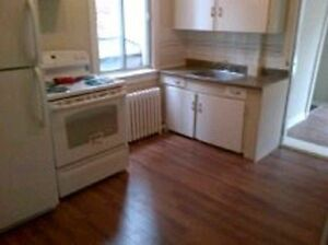 Large 4 BDR Apartment in Sandy Hill - $2,000/month