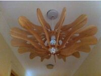 Habitat Sculptural Wooden Light Fitting