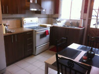 $775 / 1br - $775 / 1br - 3 1/2 for Rent in Parc-Extension (Mont