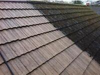 Roof Cleaning Coating and Moss Treatment Services Kent