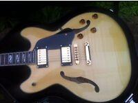 Semi acoustic washburn 335 copy.with hard case