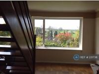 3 bedroom house in Biddenden Way, Gravesend, DA13 (3 bed)