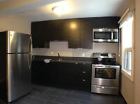 Renovated 1 BR Apartment